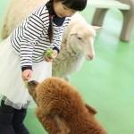 zoo_event