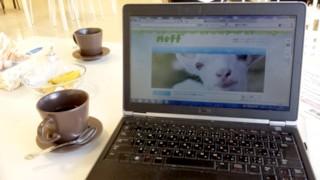 cafe_pc